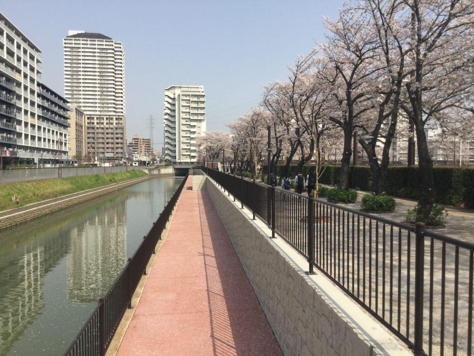 伝右川 (埼玉県草加市)