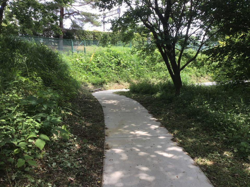 平山城址公園(東京都)